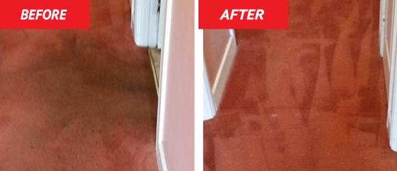 Carpet Cleaning Dublin, Wicklow, Kildare & meath